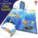usborne look inside our world-inside2