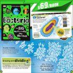 dk the bacteria book